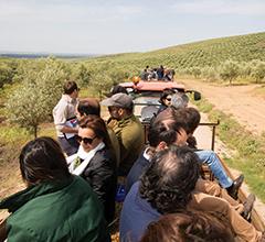 Dividido em 4 atrelados o grupo visitou a exploração de José Maria Falcão